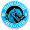 Prague Raptors Football Club, z. s.